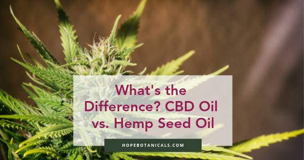 What is the difference between cbd oil and hemp oil, or hemp seed oil, or hemp extract?